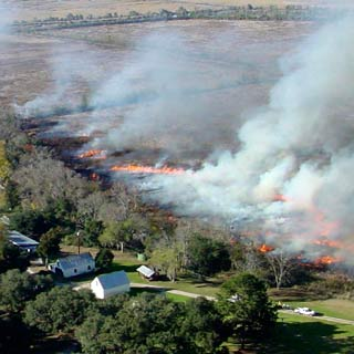 Prescribed Burning Liability